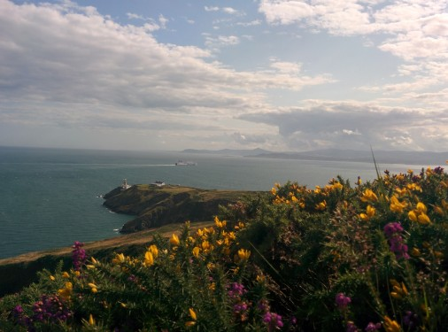 Cliff walk in Howth